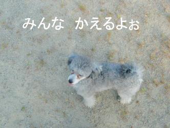 ♪おさんぽっ♪